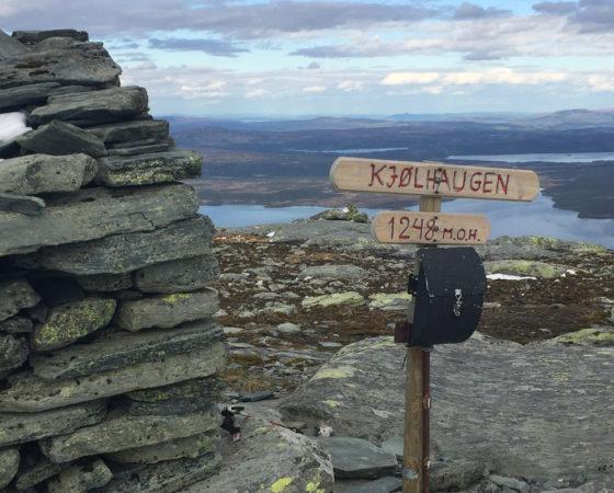 Kjølhaugen – 1248 MOH